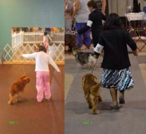 B handling dogs